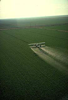 An airplane spreading pesticide.
