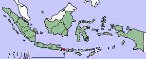 Map showing Bali within Indonesia