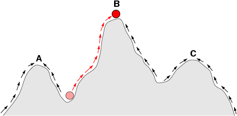 Figure 1: Sketch of a fitness landscape. The arrows indicate the preferred flow of a population on the landscape, and the points A, B, and C are local optima. The red ball indicates a population that moves from a very low fitness value to the top of a peak. Illustration by C.O. Wilke, 2001.
