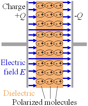 The electrons in the molecules shift toward the positively charged left plate.  The molecules then create a leftward electric field that partially annuls the field created by the plates.  (The air gap is shown for clarity; in a real capacitor, the dielectric is in direct contact with the plates.)