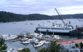 The harbor at Friday Harbor, with a docked ferry awaiting passengers.